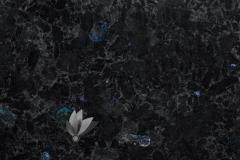 VOLGA_BLUE